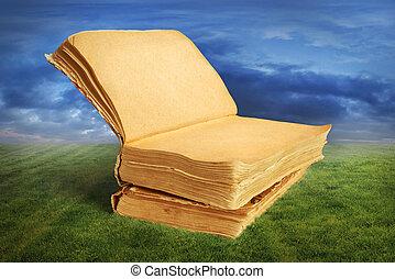 conceito, magia, aberta, leitura, capim, livro, sonhar