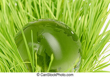 conceito, meio ambiente, globo, capim, vidro