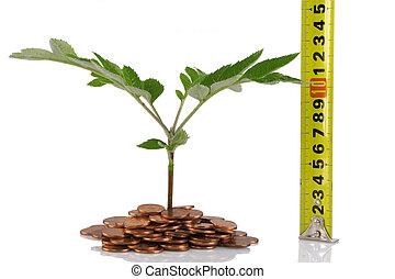 conceito, para, crescimento negócio