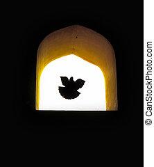 conceito, voando, fundo, através, janela., pomba, esperança