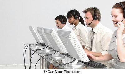 concentrado, pessoas, trabalhando