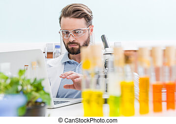 concentrated bearded scientist working with laptop in laboratory