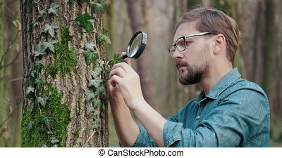 Concentrated biologist examining forest environment - Side ...