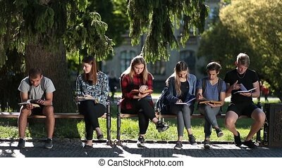 Concentrated classmates learning together outdoors - Busy...