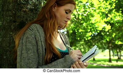 Concentrated redhead doing assignments sitting on lawn leaning against tree