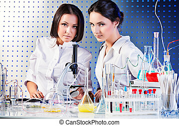 concentrating on work - Laboratory staff in the working...