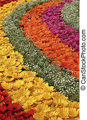 Close view of concentric floral decoration at Republic Day Flower Show, Lalbagh, Bangalore, India, Asia