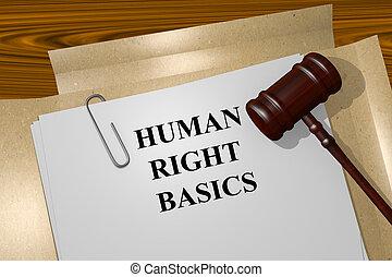 concept, élémentsessentiels, droit, humain