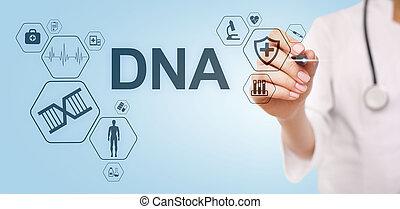 concept, adn, science, monde médical, screen., deoxyribonucleic, acid., healthcare