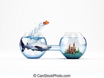 concept, amélioration, saut, rendre, poisson rouge, progrès, 3d