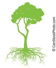 concept, arbre, vecteur, écologie, racines, fond, carte