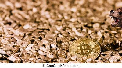 concept, bitcoin, crypto, marché baisse