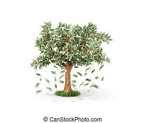 concept, business, arbre, dollar, économies, argent, croissant, factures, ou