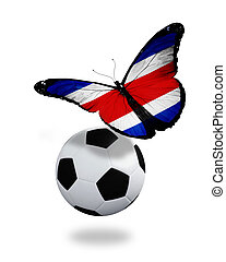 Concept - butterfly with Costa Rica flag flying near the ball, like football team playing