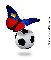 Concept - butterfly with Liechtenstein flag flying near the ball, like football team playing