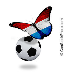 Concept - butterfly with Luxembourg flag flying near the ball, like football team playing