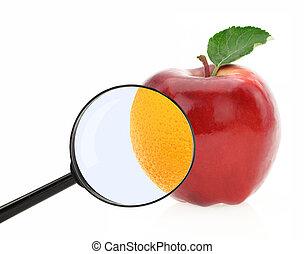concept., cellulite, régime, contre, fruits