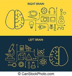 concept, cerveau, fonctions, droit, gauche