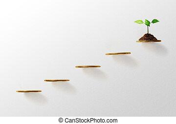 concept., crescimento, negócio