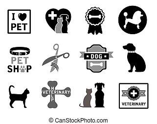 concept, ensemble, vétérinaire, icônes