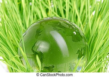 concept, environnement, globe, herbe, verre