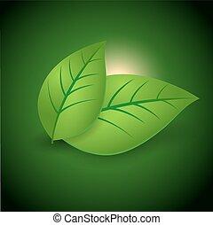 concept, feuilles, écologie, vert, lustré, icône