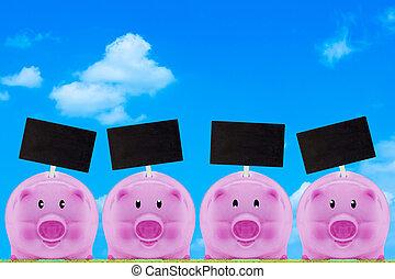 concept, financieel, reddend geld
