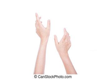 concept, fond, atteindre, isolé, deux, tenant mains, blanc