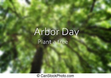 concept, image, arbre, brouillé, tonnelle, fond, grand,...