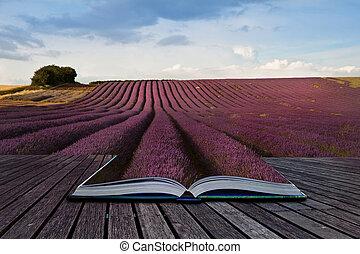 concept, image, lavande, créatif, livre, pages, paysage