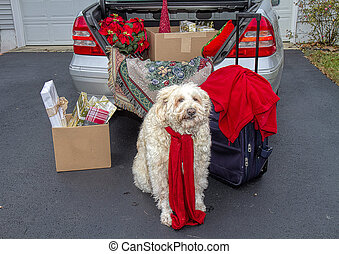 Concept Image, Trunk of Car packed ready to travel for the holidays. Dog Awaits