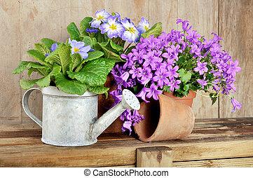 concept, jardin, printemps