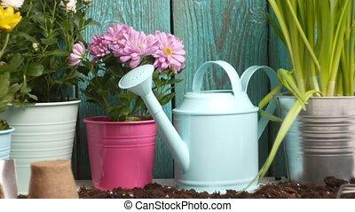 concept, jardinage