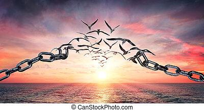 concept, liberté, voler, -, ailes, cassé, charge, chaînes, oiseaux