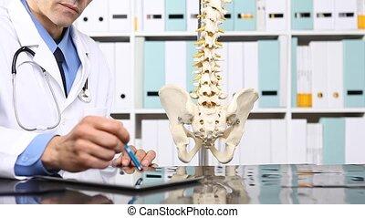 concept médical, informatique, tablette, docteur