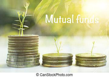 concept., moeda, mútuo, árvore, fundos