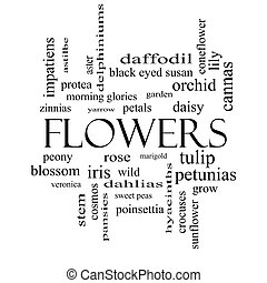 concept, mot, noir, fleurs blanches, nuage