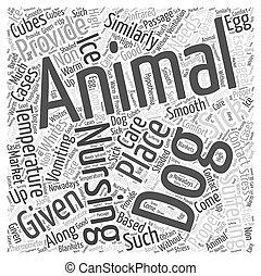 concept, mot, soins, chien, malade, nuage