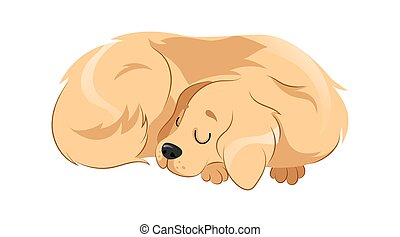 Concept Of Animal Care And Shelter. Pretty Dog Is Sleeping Putting His Head On Paws. Animal Care, Adoption And Support. Lazy Dog Sleeps At Home At His Place. Cartoon Flat Style. Vector Illustration