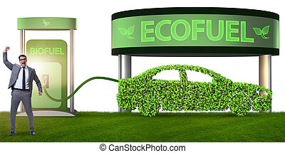 Concept of bio fuel and ecology preservation