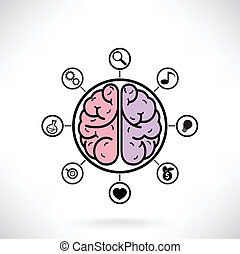 Concept of brain function for education and science