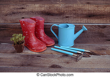 Concept of gardening: green shoots of seedlings in a peat pot, pink gumboots, blue watering can, rake and shovel on a wooden background