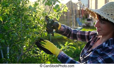 Young woman caring for trees in her garden