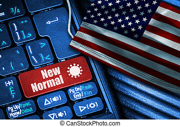 New Normal in the United States during Covid-19