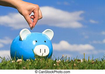 savings - concept of savings