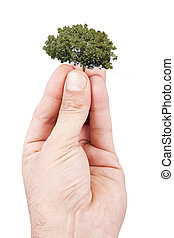 concept of sustainable development, balance