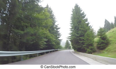Concept of vacation travel in car driving along beautiful dense forest in mountains POV of wood winding way