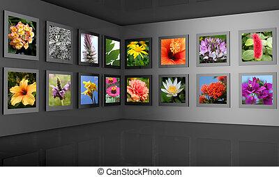 concept, photographie, salle, fleur, exposition, galerie