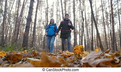 concept, randonée couple, repos, forêt automne, actif, sacs dos, randonneurs