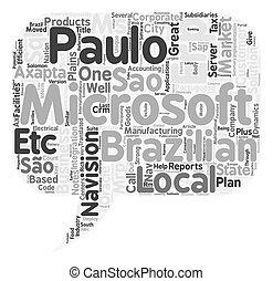 concept, sao, customization, navision, exécution, texte, ...